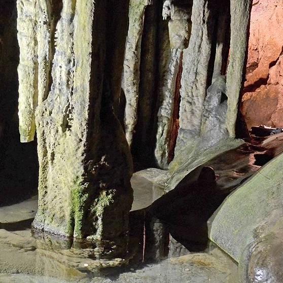 Ledenika Cave