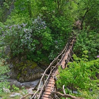 Ждрелото на река Ерма (Трънското ждрело)