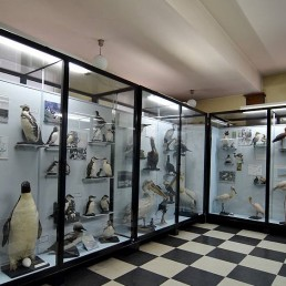 National Natural Science Museum at the Bulgarian Science Academy