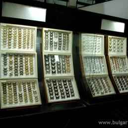 Природонаучен музей - с. Черни Осъм