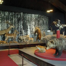 Museum of Natural History – Village of Cherni Osam