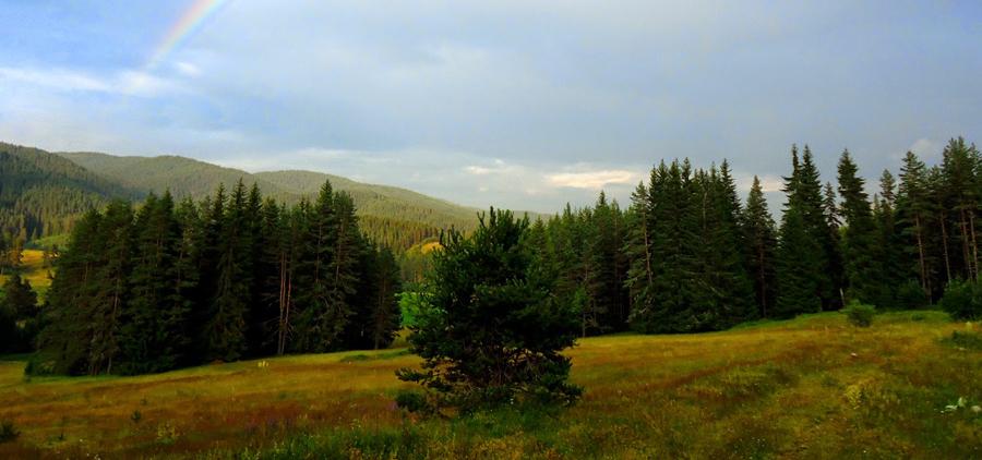 Ридът Дъбраш Родопите