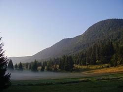 Ридът Дъбраш